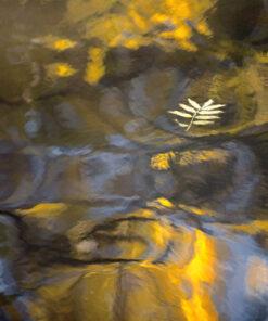 vattenspeglingar lahall JPL002485
